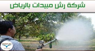 افضل-شركة-رش-مبيدات-بالرياض