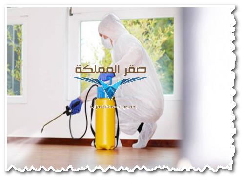 شركة رش مبيدات شمال الرياض