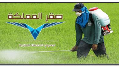 صورة شركة رش مبيدات شمال الرياض
