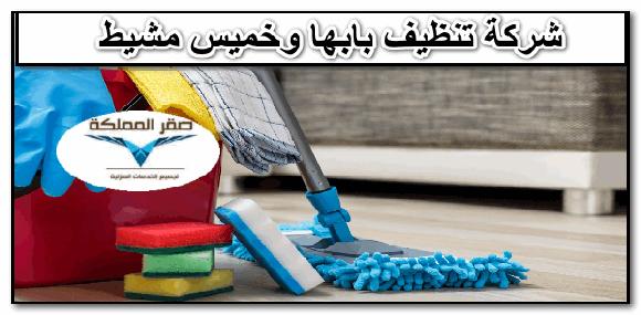 صورة شركة تنظيف بابها وخميس مشيط